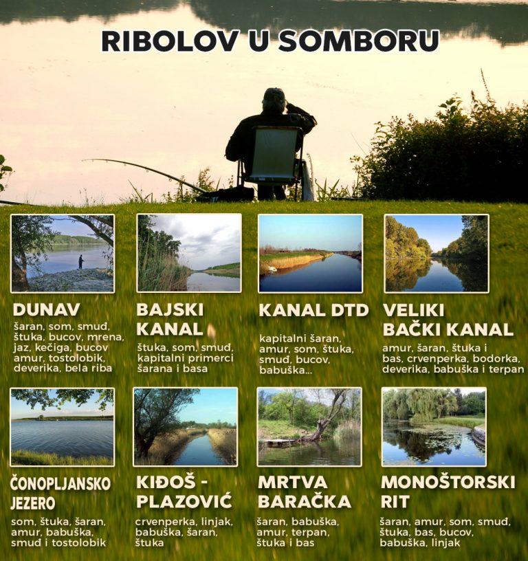 Raj za sve ribolovce: U somborskoj opštini mnoštvo terena za pecaroše
